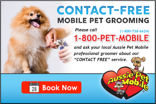 Contact Free Mobile Pet Grooming